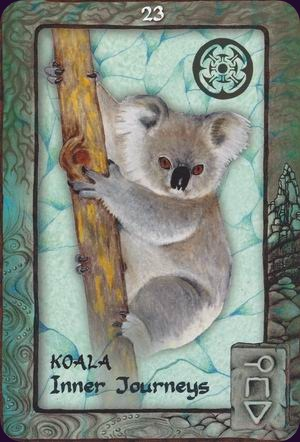 Animal-Dreaming-Oracle-3