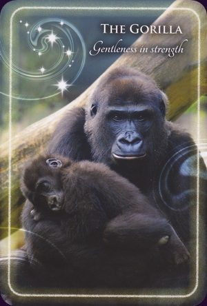 Animal-Whispers-Empowerment-Cards-5