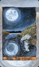 Cards from Animism Tarot