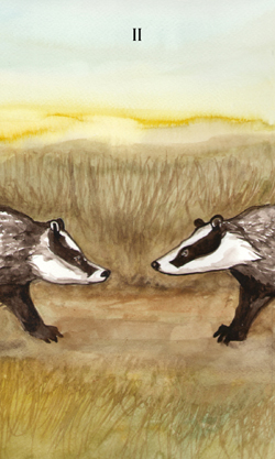 Badgers-Forest-Tarot-3
