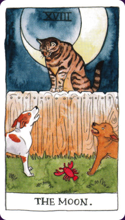 Cat Tarot4