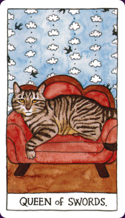 Cat Tarot8