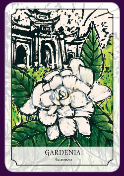 Flower-Reading-Cards-2
