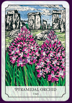 Flower-Reading-Cards-4