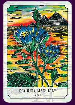 Flower-Reading-Cards-6