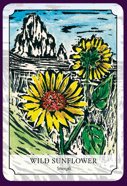 Flower-Reading-Cards-7
