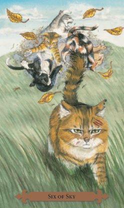 9 lives cat food recall 2016