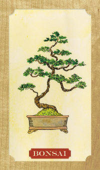 Tree-of-Life-Oracle-2