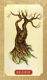 Tree-of-Life-Oracle-3