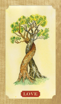 Tree-of-Life-Oracle-4