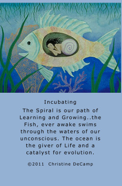 Wild-Spirit-Wisdom-Oracle-7